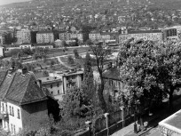 1960,  kilátás a Tóth Árpád sétányról a Vérmező és a Széchenyi-hegy felé