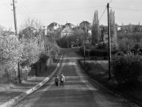 1968, Vend utca, 2. kerület