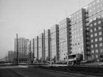 1978, Páskomliget utca, 15. kerület