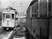 1970, Vörös fény (Nemes) utca, 18. kerület