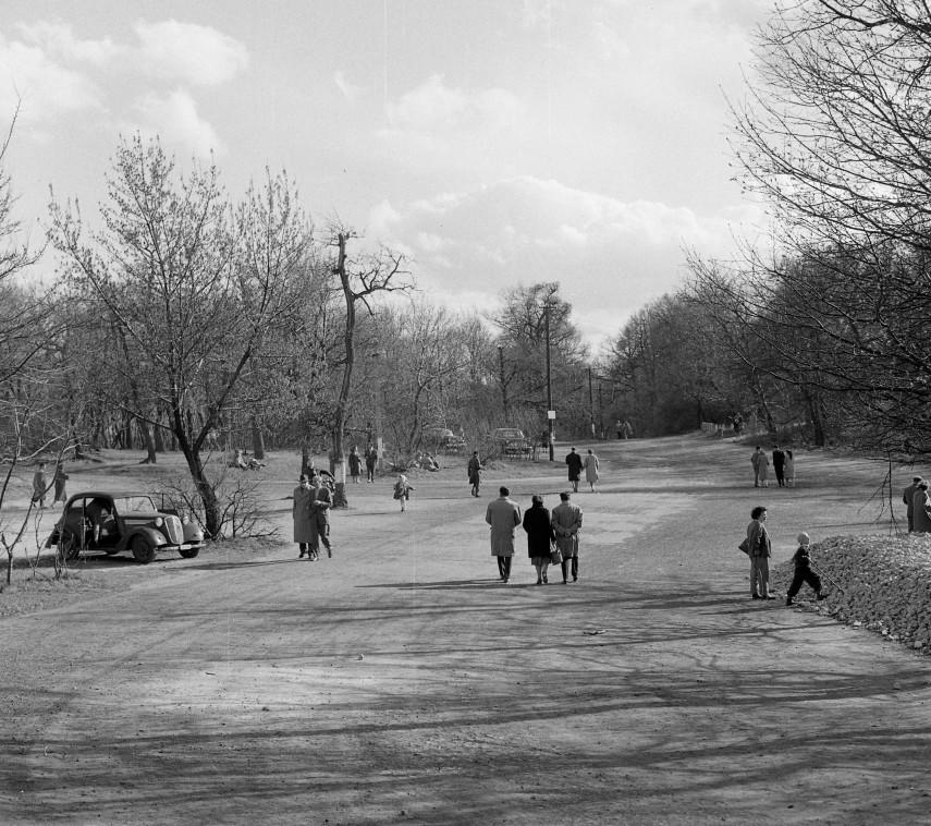 1961, az Erzsébet kilátó út torkolata a Jánoshegyi útnál