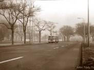 1973, Kós Károly sétány, 14. kerület