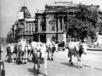 1947, Blaha Lujza tér, 8. kerület
