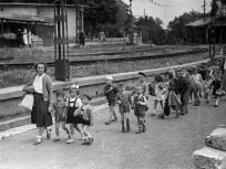 1951, Karthauzi utca, 12. kerület