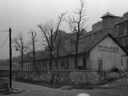 1956, Váralja utca, 1. kerület