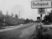 1958, Ady Endre (Hidegkúti út), 2. kerület