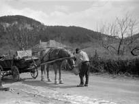 1958, Szalonka út,2. kerület