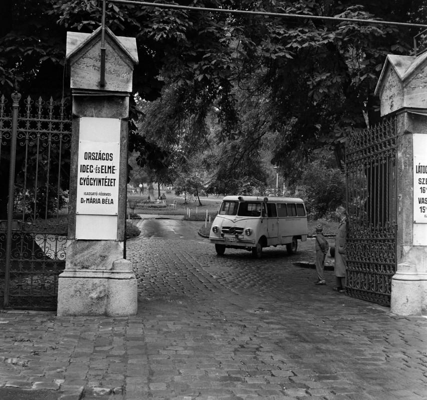 1966, Vörös Hadsereg útja (Hűvösvölgyi út), 2. kerület