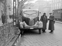 1954, Bartók Béla út, 11. kerület