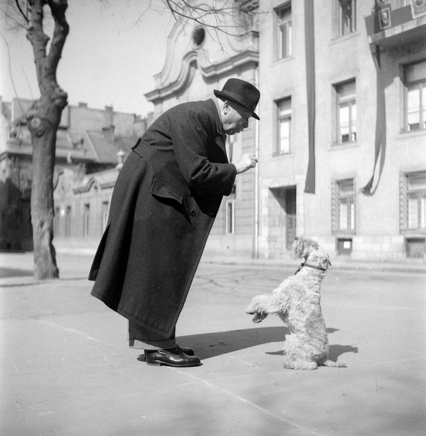 1952, Bakáts tér, 9. kerület