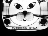 1960-as évek, Futrinka utca