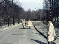 1942, Zugligeti út, 12. kerület