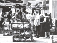 1960-as évek, Teleki László tér, 8. kerület